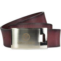 Photo of belt