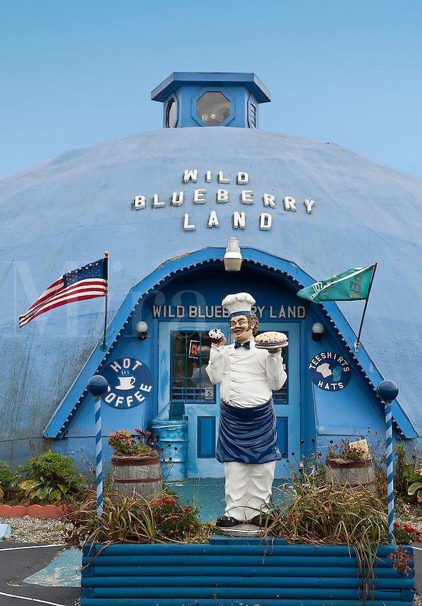 Wild Blueberry Land Maine Me Usa Around The World Roadside Attractions Pinterest Wild
