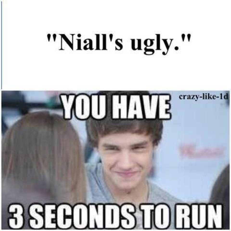 I Wouldn T Even Give Them 3 Seconds They Don T Deserve It I D Just Kill Them One Direction Humor One Direction One Direction Memes