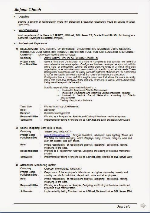 model cv gratuit Sample Template Example of Excellent Curriculum - project management objective resume