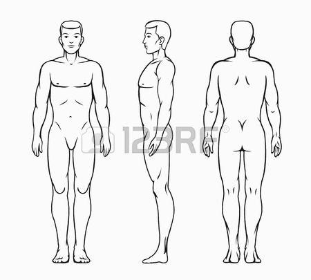 Hombre Ilustracion Vectorial Cuerpo Figurin De Hombre Ilustracion Vectorial Dibujos De Hombres