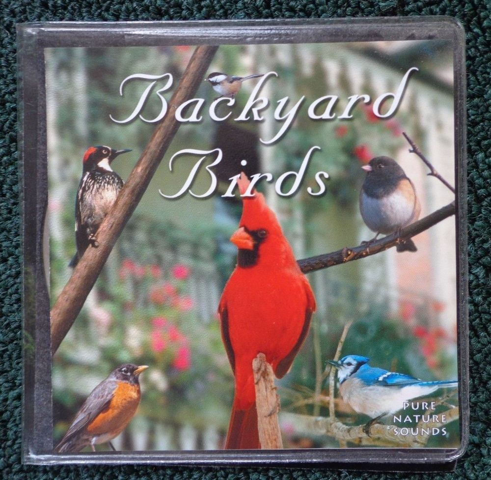 Naturescapes Music BACKYARD BIRDS CD Pure Nature Sounds ~ FREE
