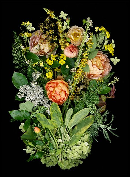 Multicolored Bouquets and Floral Collections - Scanner Photography By Ellen Hoverkamp