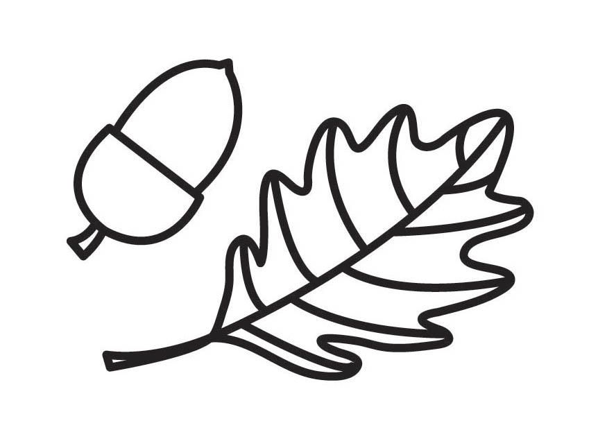 Leaves and Acorns Coloring Page | Craft ideas | Pinterest | Craft