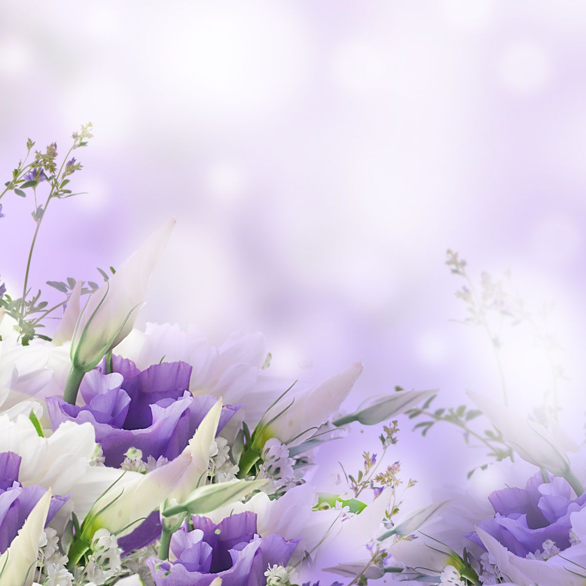 Purple Violets Floristry is based in Bristol, we are