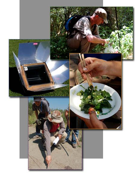 The Website Of My Bou Bou Talented Food Preservationist And Forager Survival Prepping Outdoor Survival Survival