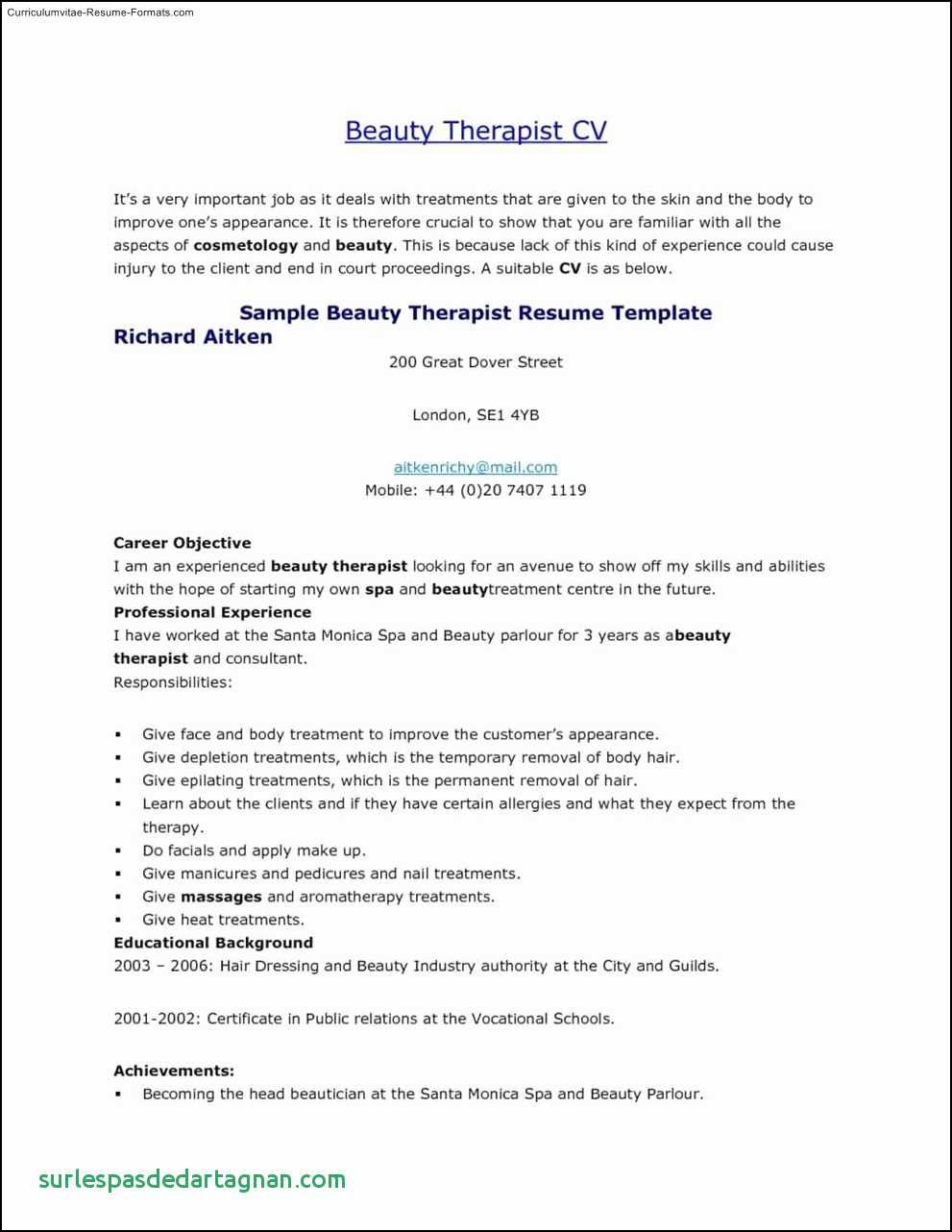 Cv Template Youth Central Resume Format Resume Template Good Resume Examples Therapist