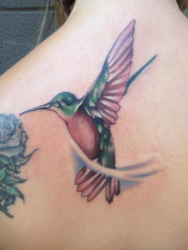 55 Amazing Hummingbird Tattoo Designs Cuded Hummingbird Tattoo Bird Tattoo Men Birds Tattoo