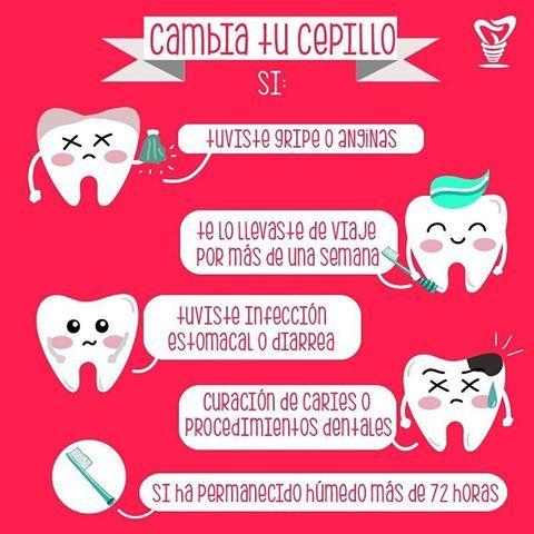 Unitips recomendado para todos! Cuiden sus cepillos dentales  UnidentGye ✓   teethbrushing  cepillodental  dentista  odontologo  cuidado  salud  caries bf23d1a2c445