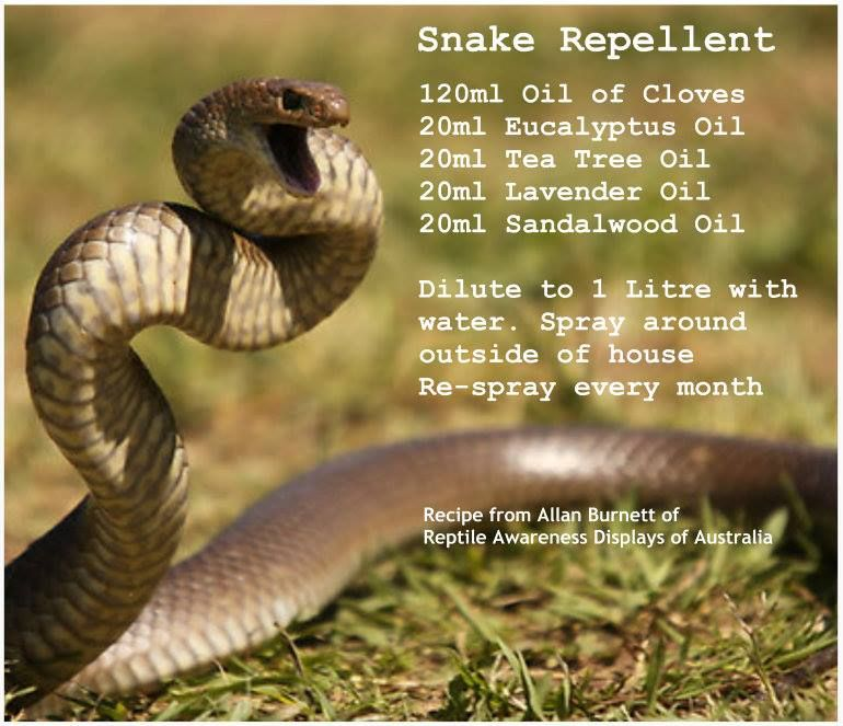 Snake Repellent - I could do without the picture but I'm