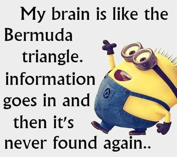 Pin By Wendie De Jager On Nice Workout Quotes Funny Minions Funny Funny Quotes