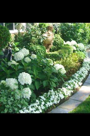 4cadf9d7546a4e22a8128064d3309402g 640960 zahrada pinterest white hydrangea with white flower border and lots of green 4cadf9d7546a4e22a8128064d3309402g 640960 mightylinksfo