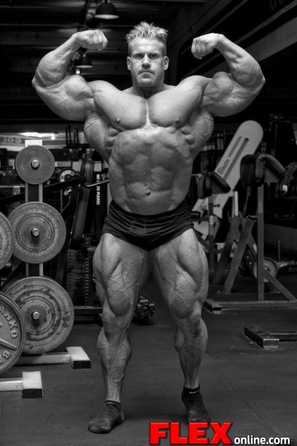 Image result for sick pictures of body builders""