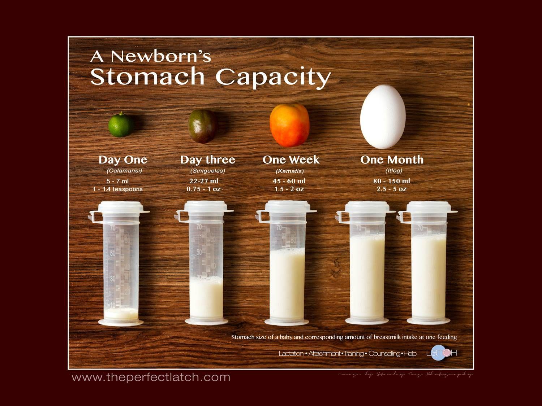 Your newborn's stomach capacity.