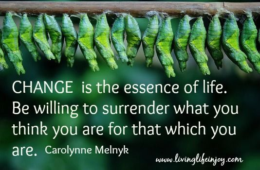 You are a magnificent, powerful creator: the chrysalis awaiting to expand into a butterfly.