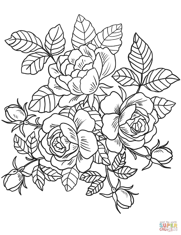 Image result for vintage flower coloring pages Rose