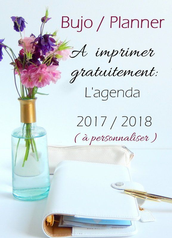 bullet journal et planner l 39 agenda 2017 2018 imprimer gratuitement 3 organisation. Black Bedroom Furniture Sets. Home Design Ideas