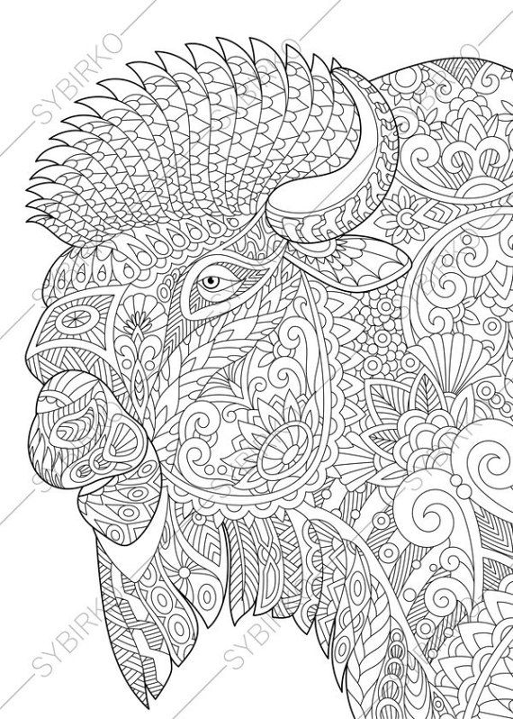 Coloring Pages For Adults Bison Buffalo Bull Adult Coloring