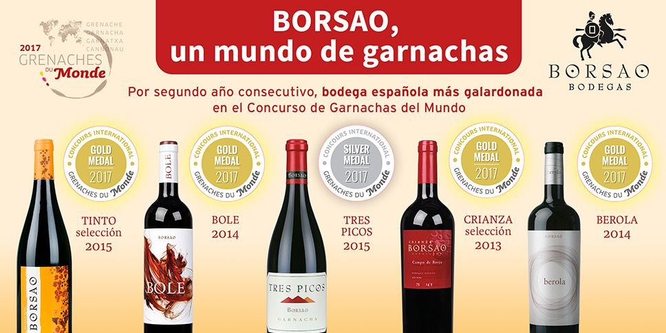 Bodega Borsao Has Been The Origin And Engine Of The D O Campo