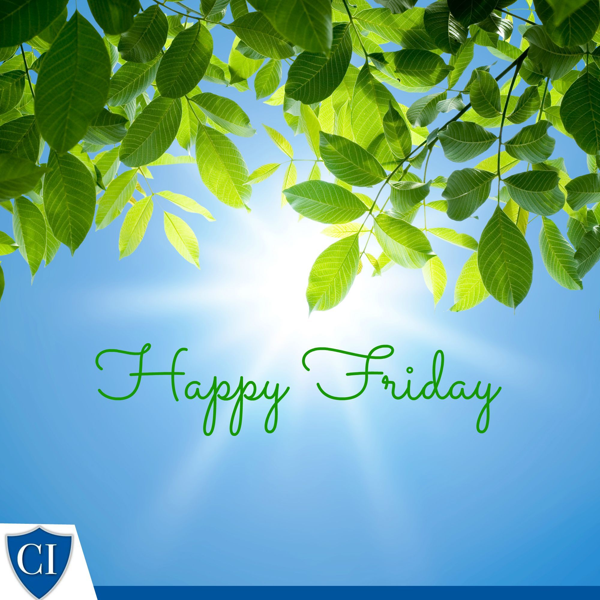 Happy Friday! Friday Friyay Commercial insurance