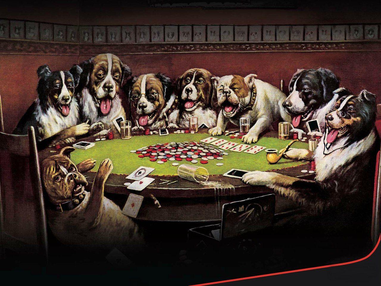 Картинки собак играющих в карты