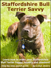Learn How To Make Your Staffordshire Bull Terrier Happy Healthy And Obedient Foster Dog Staffordshire Bull Terrier Bull Terrier