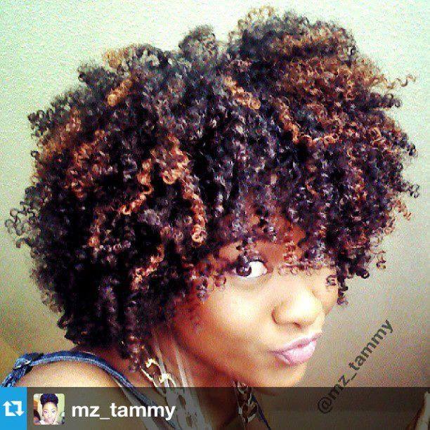 Natural Hair With Highlights Kinda Sorta Vaguely Familiar Natural Hair Styles Curly Hair Styles Naturally Natural Hair Inspiration