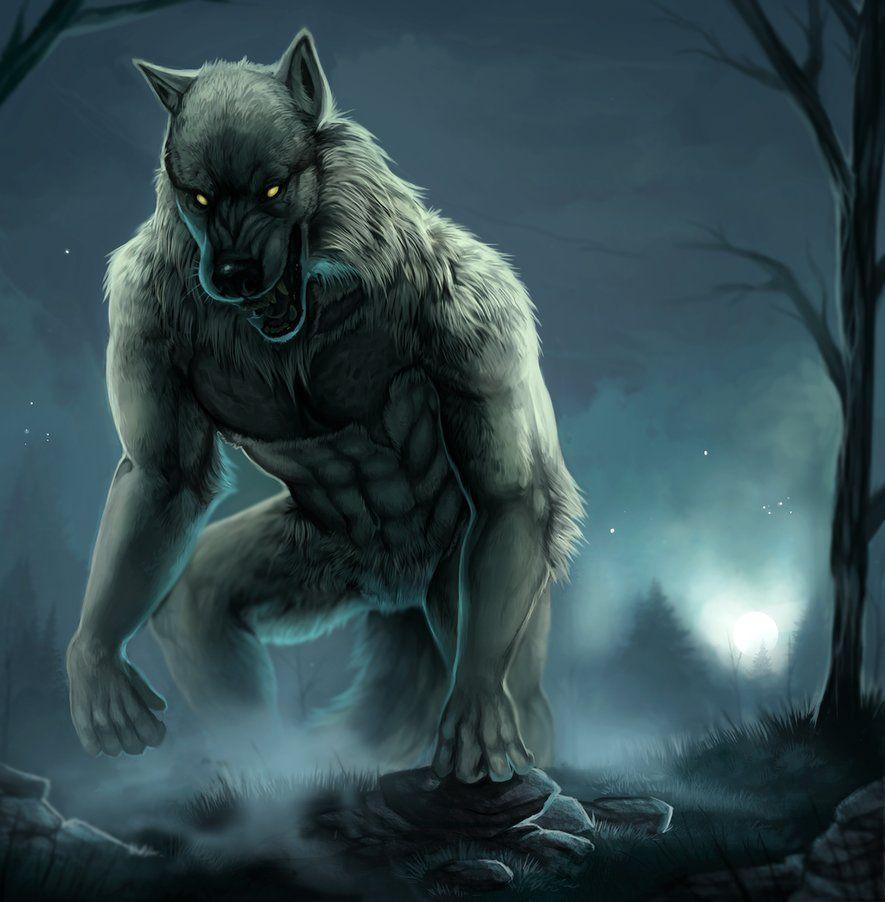 Pin By Johnny Allen On Artwork Werewolf Art Canine Art Werewolf