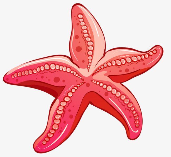 Red Starfish | Dessin étoile de mer, Etoile de mer ...