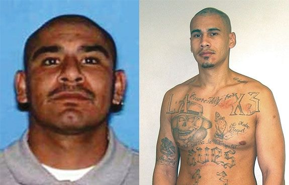 L A Mexican Gang Member Google Search Gang Gang Member Southern California