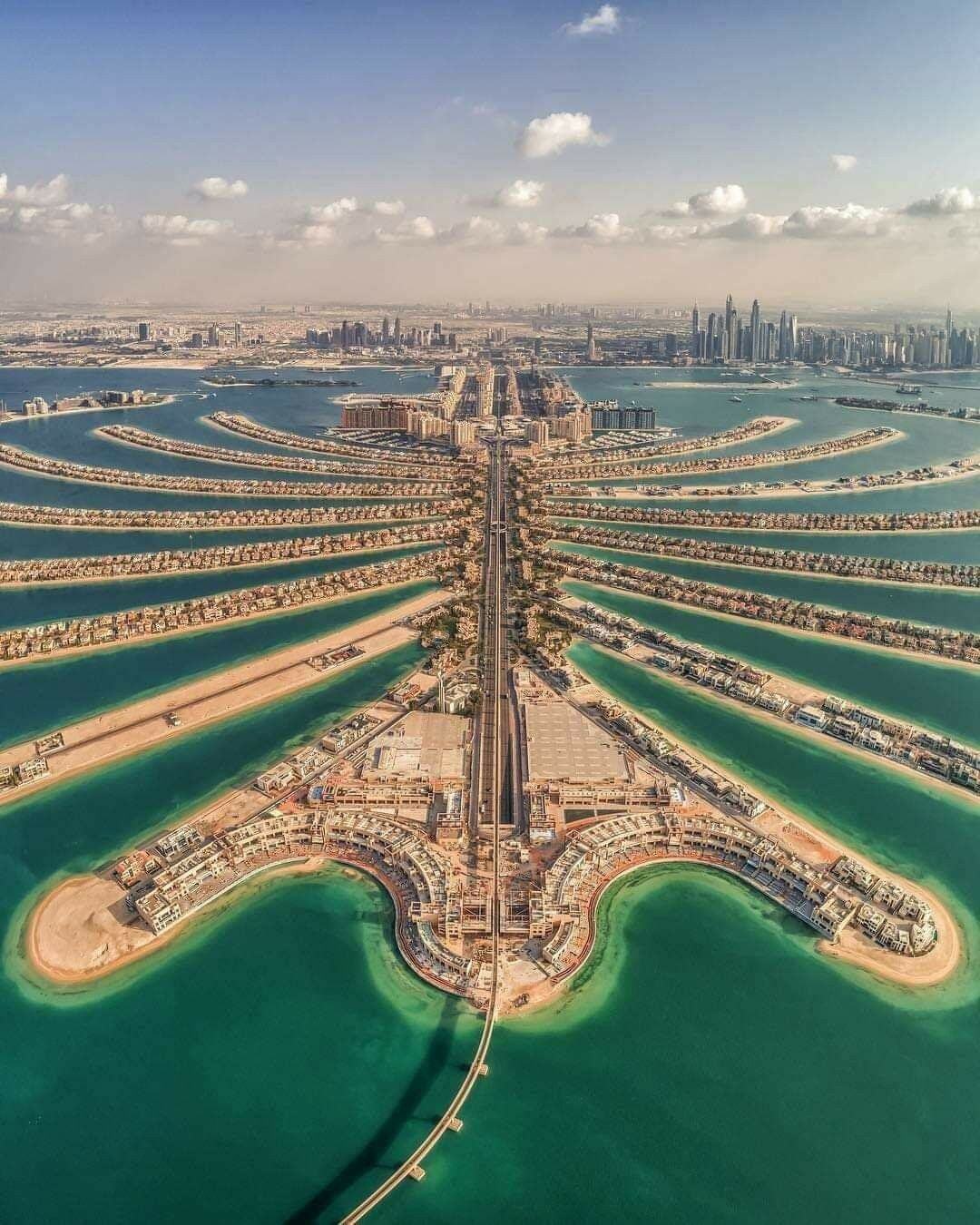 Pin by Hamed Alshabibi on Amazing Arab life in 2020 Palm