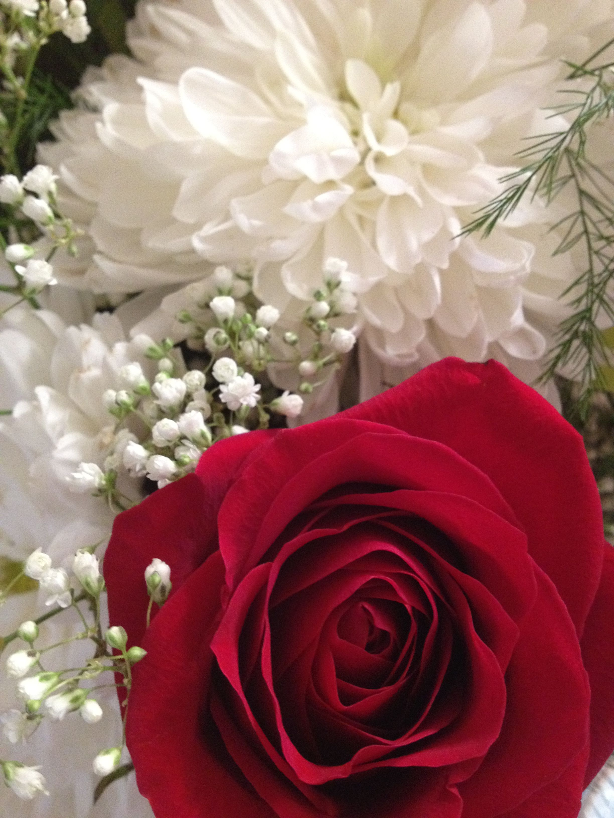 Wedding Anniversary Flowers Red Roses White Mums Babys Breath