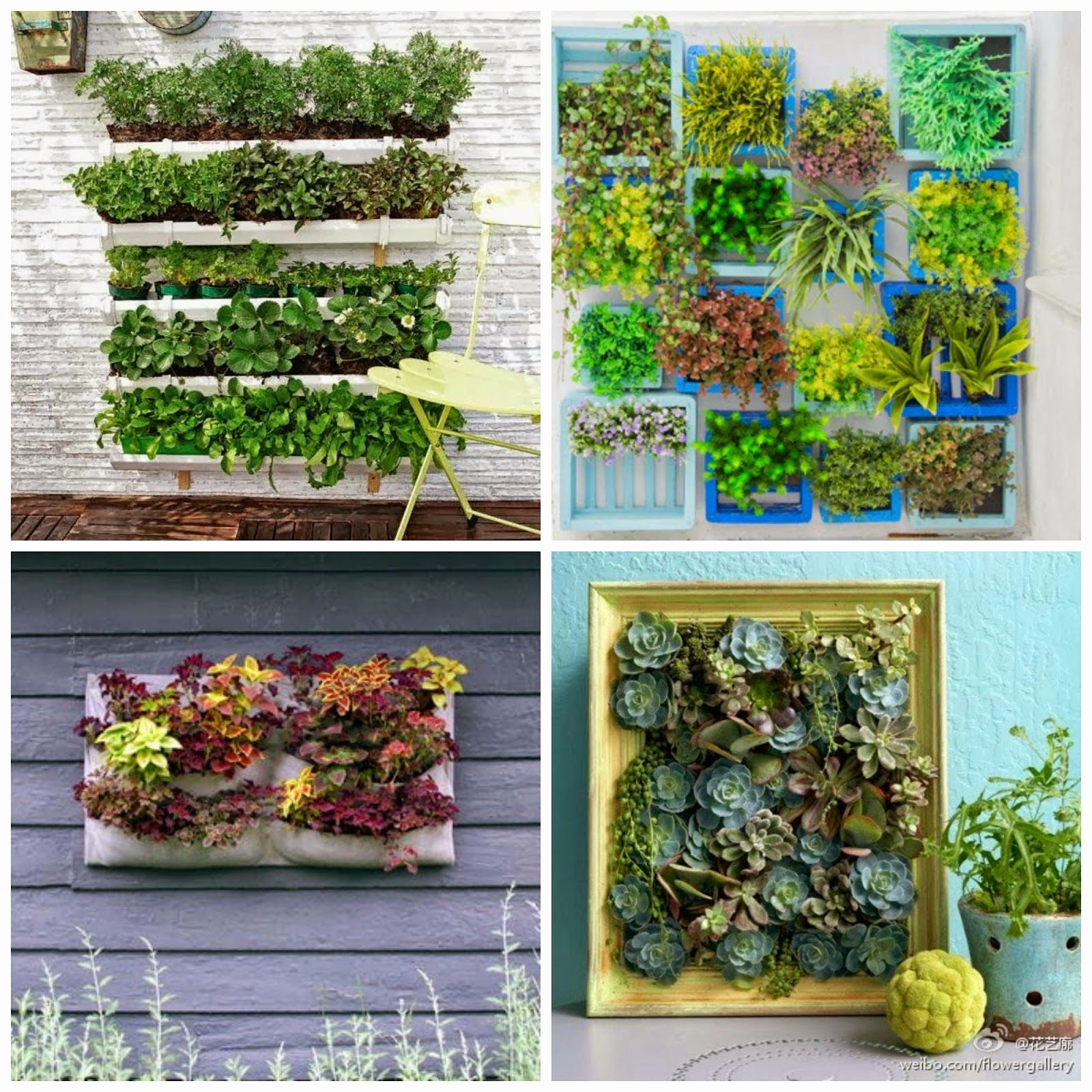 Diy jardines verticales verde verde pinterest jard n for Jardines verticales introduccion