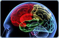 Symptoms of Bleeding Brain