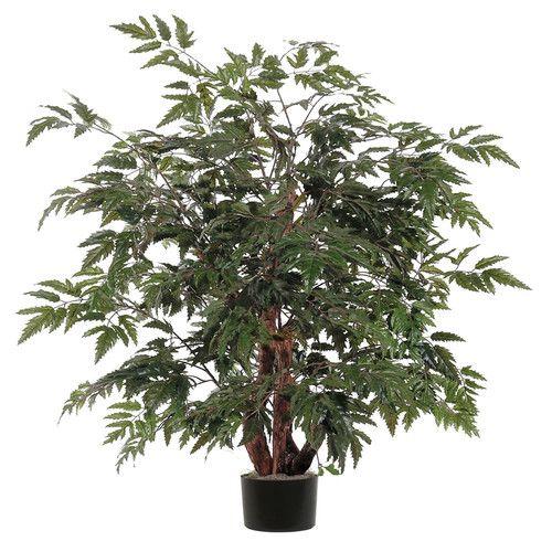 Ming Aralia Bush Floor Plant In Pot Potted Trees Floor Plants Faux Plants