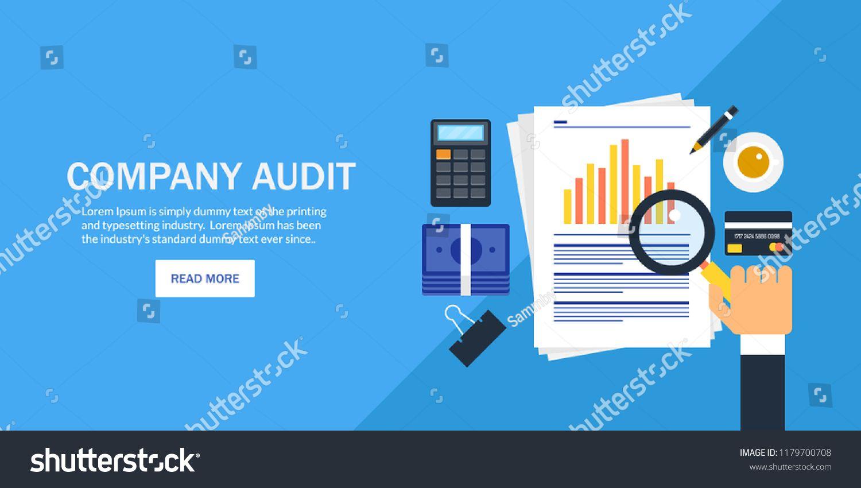 Company Audit Investment Data Analysis Marketing Report Flat