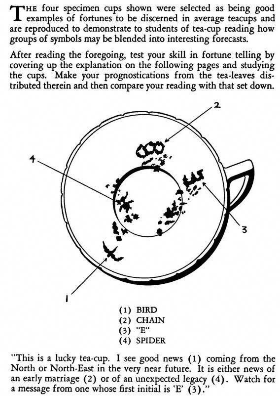 What Does Read The Tea Leaves Mean The Tea Reading Tasseography