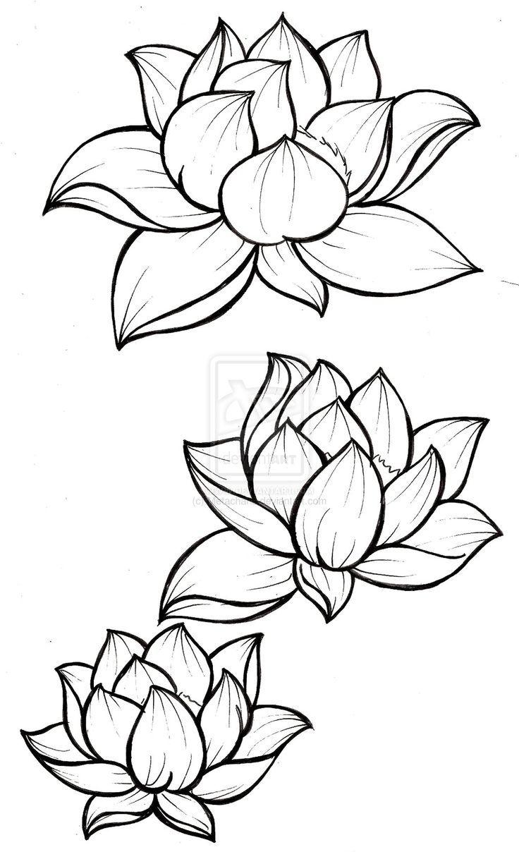 Japanese Flower Line Drawing : Japanese lotus flower drawings imgkid the