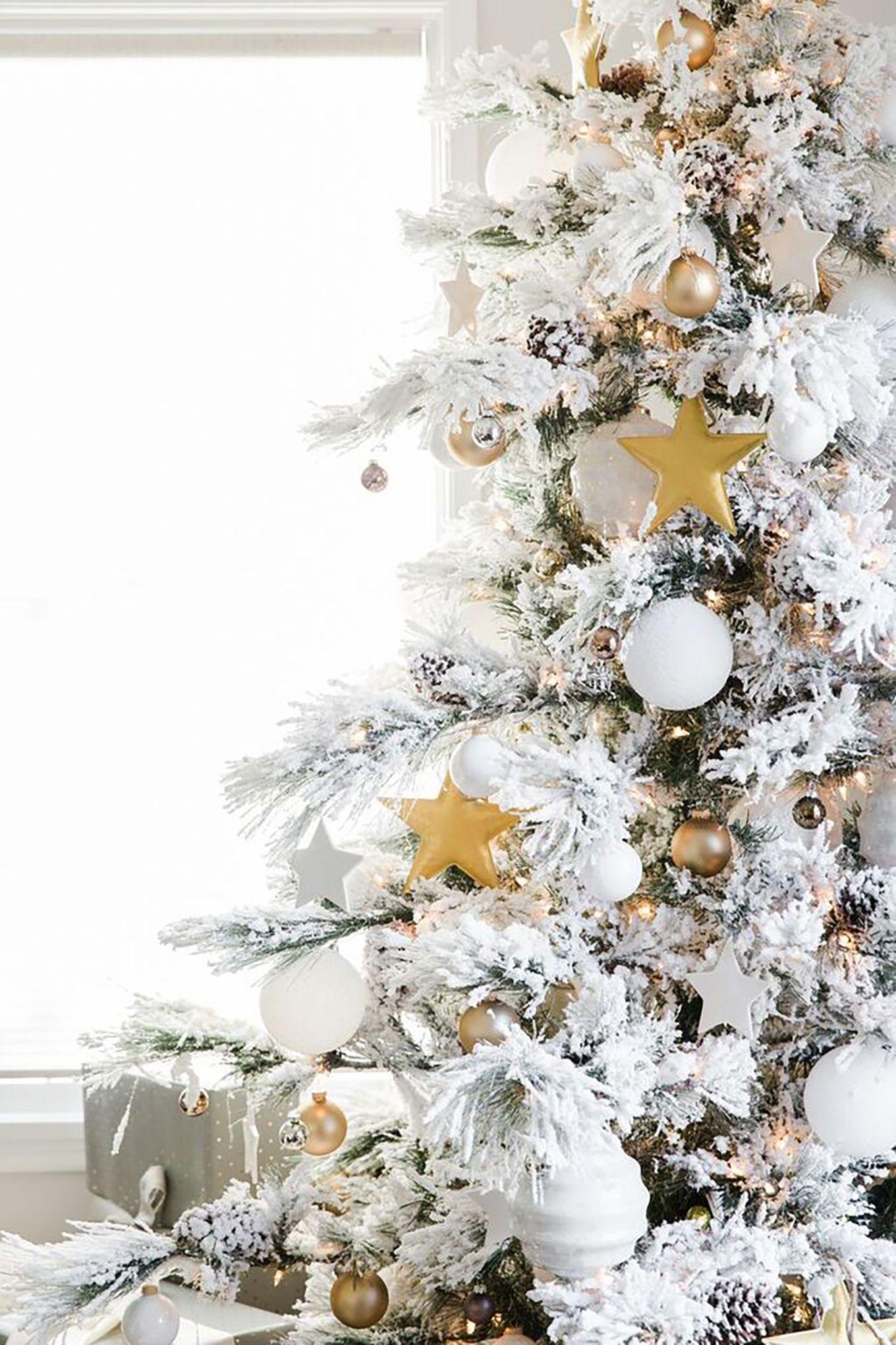 Home For Christmas Hello Fashion White Christmas Quotes Christmas Tree Themes White Christmas Snow