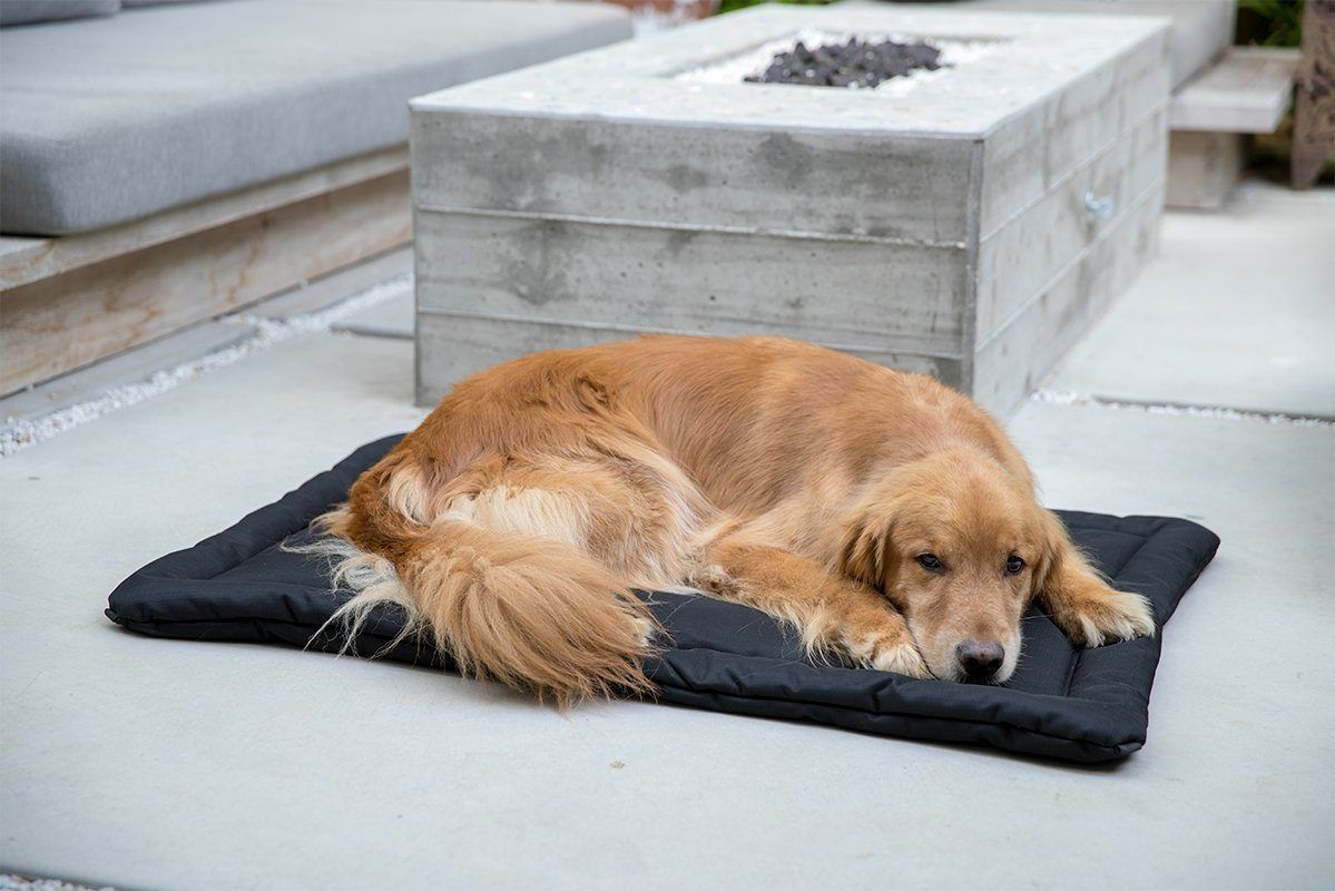 Tough Dog Crate Pad™ in 2020 Dog crate bed, Dog crate