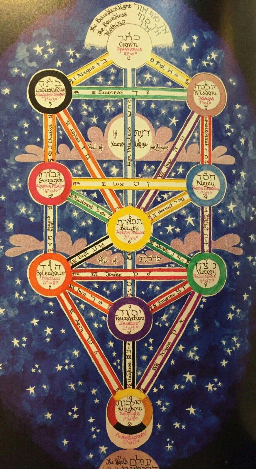 árbol De La Vida Arbol De La Vida Letras Del Alfabeto Simbologia