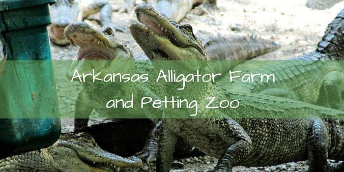 arkansas-alligator-farm.jpg (700×350)