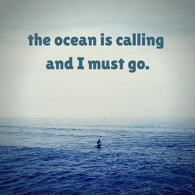 Life Is Like The Ocean Quotes: Go With Us! You Know You Want To... VetTechLife CE On The