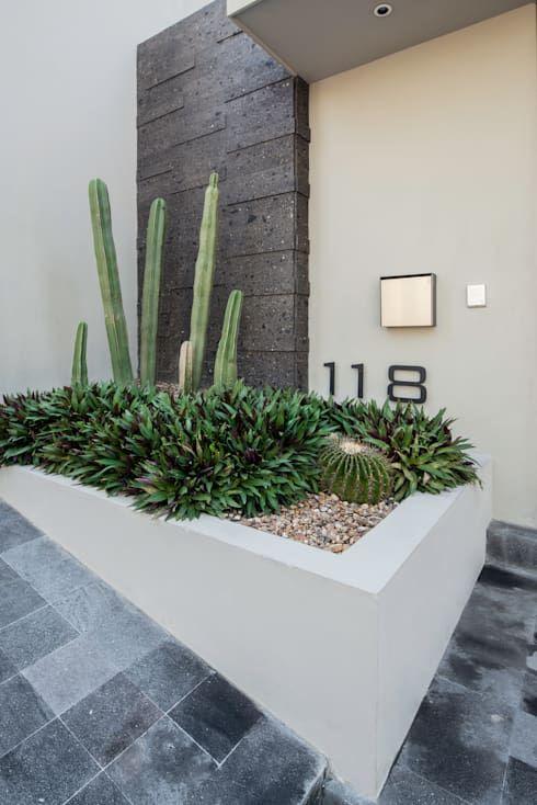 Decorar con suculentas y cactus ideas para exterior e - Jardineras de diseno ...