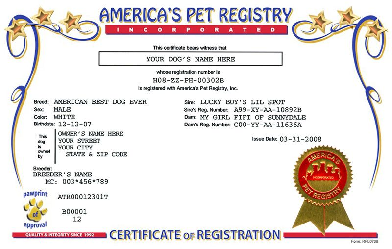 Dog Registration America S Pet Registry Pets Dogs Dog Names