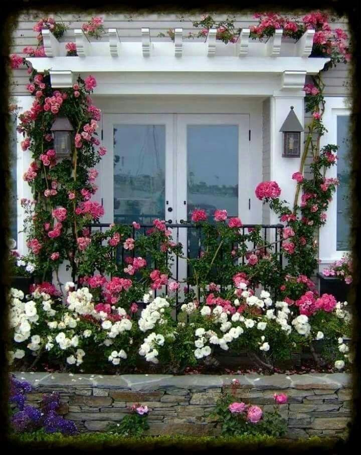 portas francesas envidra adas com rosas hayata a lan