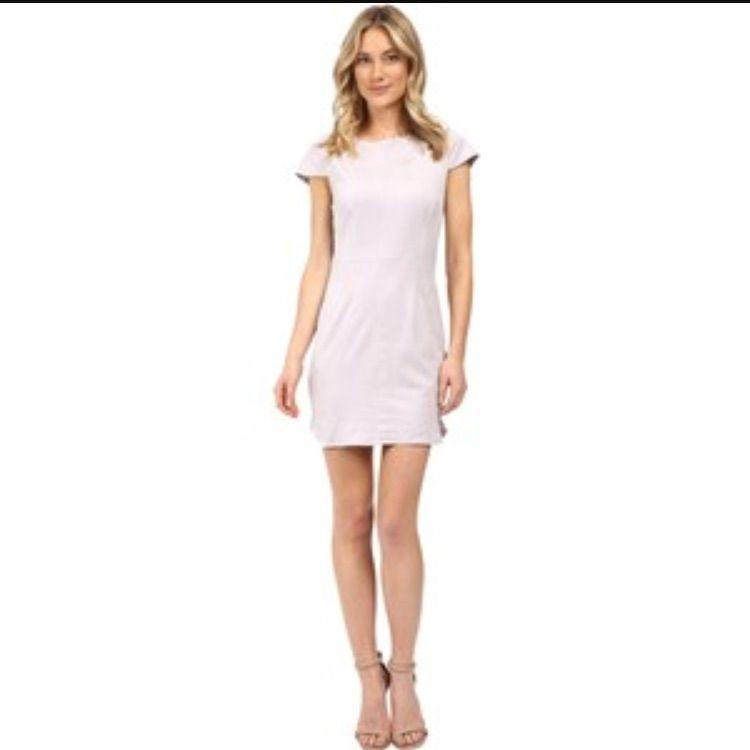 Last Chance Item  Nwt. Kenzie Suede Dress