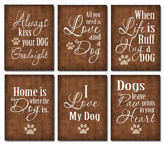 Choose ONE Dog Lover Quote Print 11x17 Poster Print by ...
