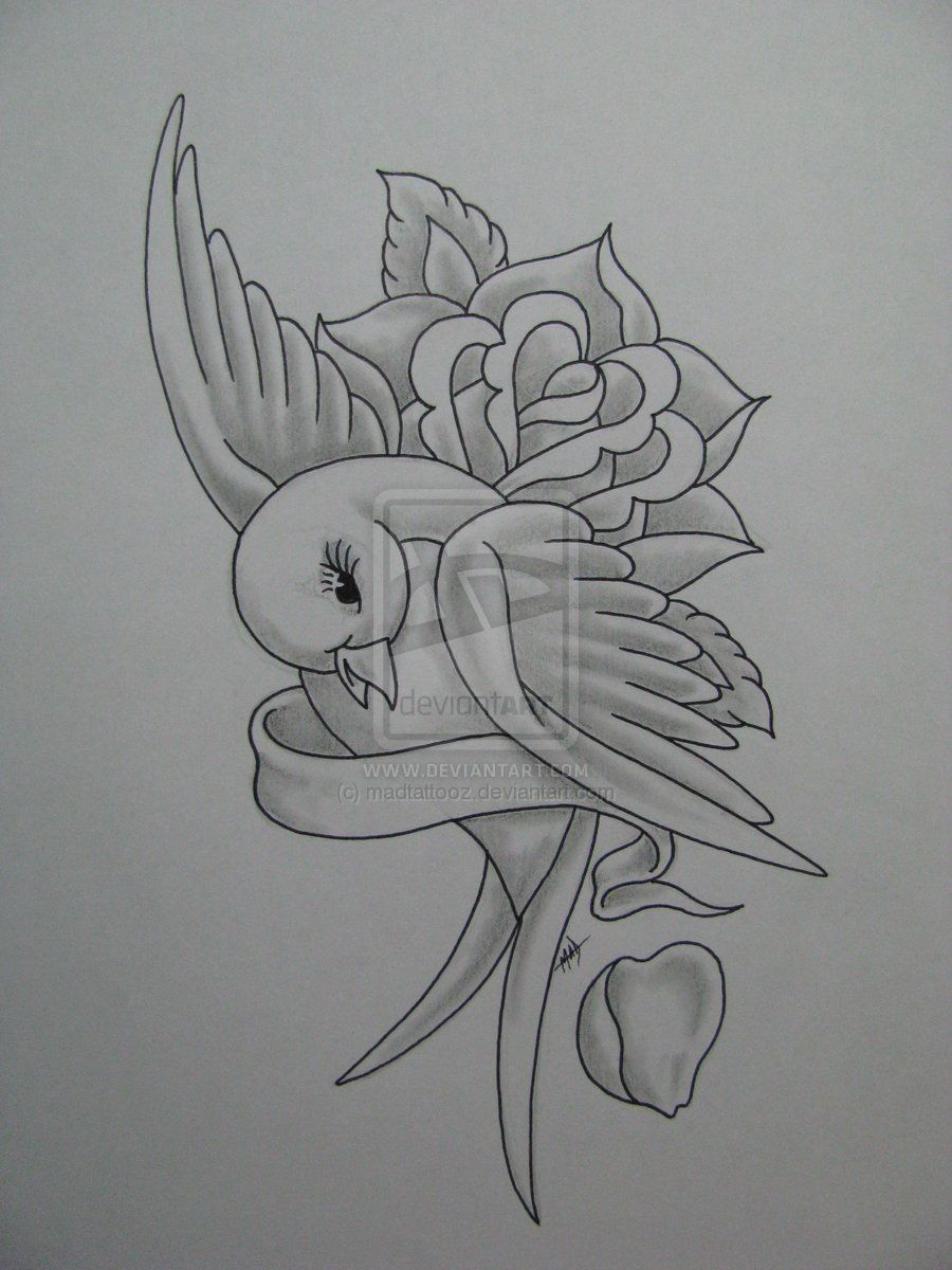 Pencil drawing swallow with rose and ribbon