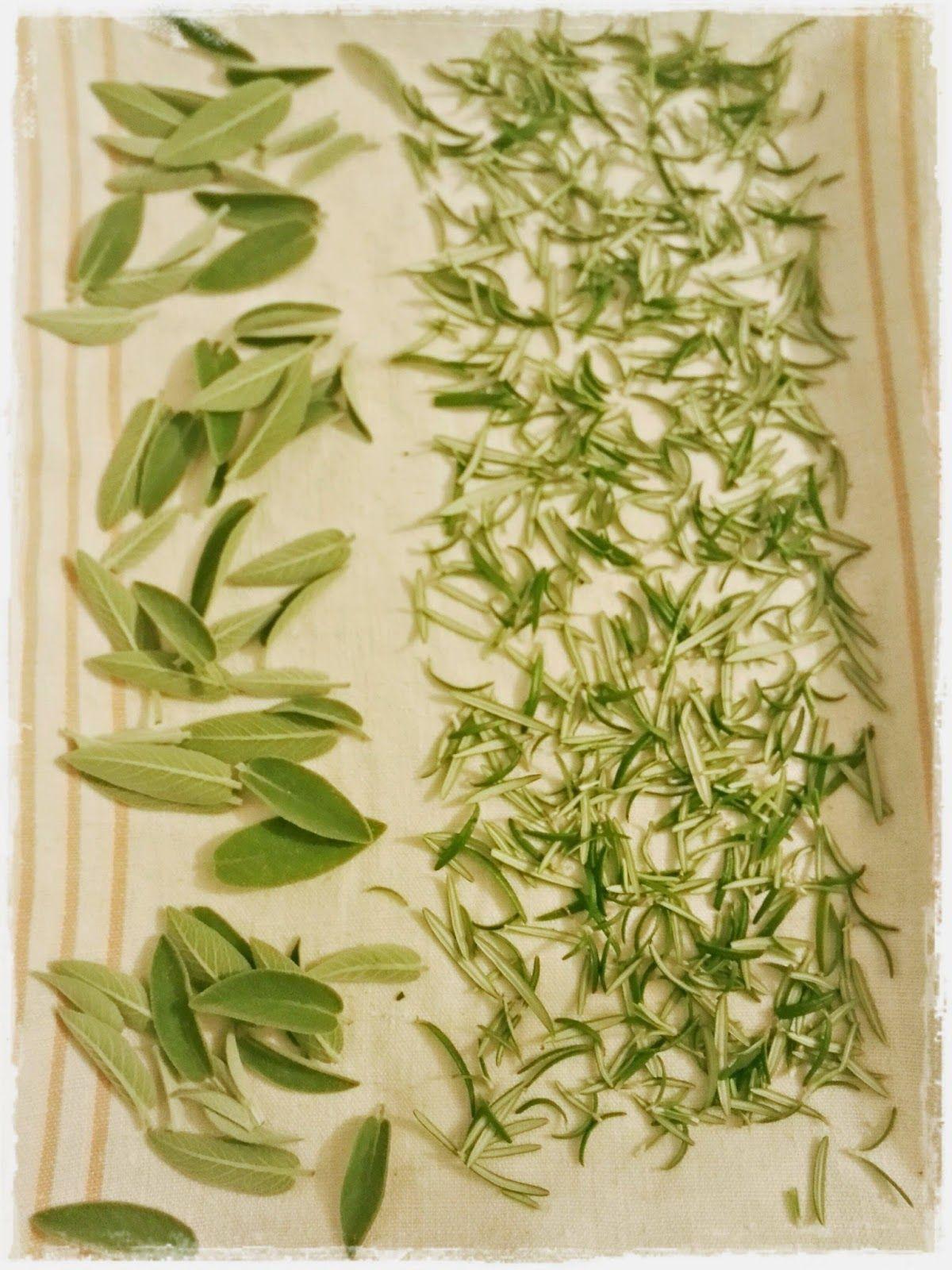 Quaderno d'appunti: Cubetti di erbe aromatiche